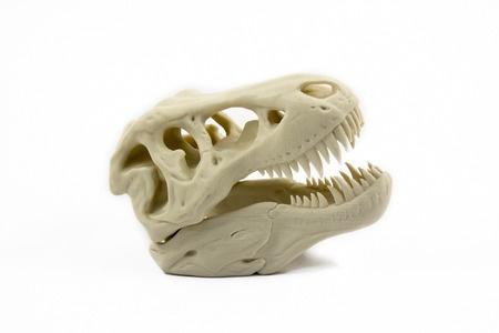 Skelet gedruckt mit PLA Filament