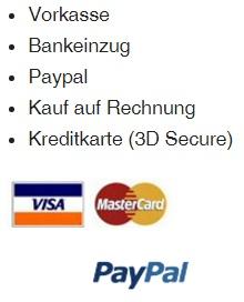Zahlarten im Tintenmarkt von Paypal bis kauf auf Rechnung