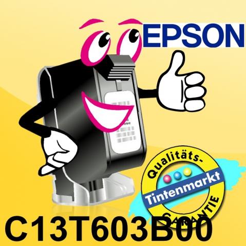 Epson C13T603B00 Druckerpatrone original , mit